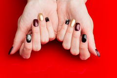 Woman hands with manicure Stock Image