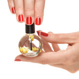 Woman hands with manicured red nails closeup. Stock Photography