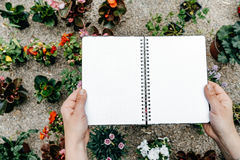 Woman hands with opened notebook on flower background, Top view Stock Photos