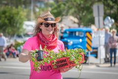 Woman hands out plants to crowds during parade. Williams Lake, British Columbia/Canada - July 2, 2016: a woman hands out free garden plants to the crowds in the Royalty Free Stock Image