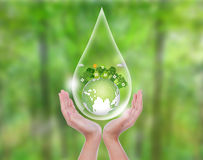 Woman hands over green forest hold water drop Stock Photo