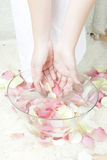 Woman hands with petals Stock Image