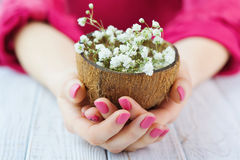 Woman hands with pink manicure holding coconut shell full of flowers Stock Photos