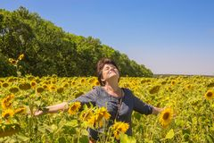 Woman with hands placed in parties among sunflowers Royalty Free Stock Photos
