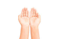 Woman hands praying on white background Stock Image