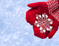 Woman hands in red gloves holding white big snowflake Royalty Free Stock Image