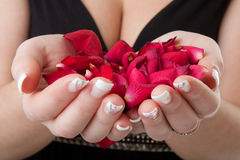 Woman hands with roses. Young woman hands with red roses stock photography