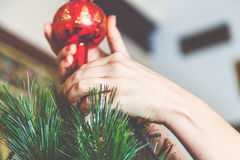 Woman hands set the top of Christmas tree Stock Images
