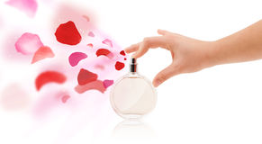 Woman hands spraying rose petals. Close up of woman hands spraying rose petals from beautiful perfume bottle royalty free stock photography