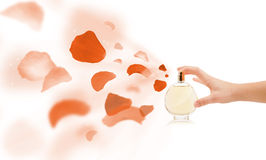 Woman hands spraying rose petals Stock Images
