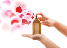 Woman hands spraying rose petals Royalty Free Stock Photography