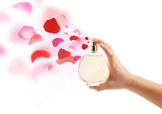 Woman hands spraying rose petals Royalty Free Stock Photo