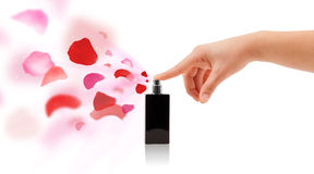 Woman hands spraying rose petals Stock Photography