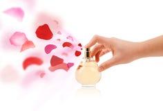 Woman hands spraying rose petals Stock Image