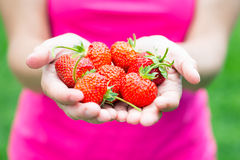 Woman hands with strawberry Stock Photos