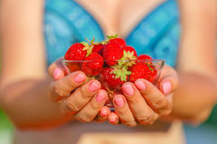 Woman hands with strawberry in garden Royalty Free Stock Images