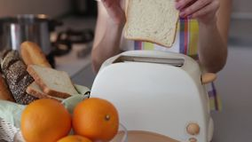 Woman hands toaster. Woman put toasts at toaster stock video footage