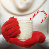 Woman hands in woolen red gloves holding a cozy mug with hot cocoa, tea or coffee and a candy cane. Stock Image