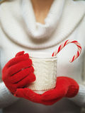 Woman hands in woolen red gloves holding a cozy mug with hot cocoa Royalty Free Stock Image