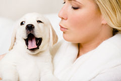 Woman hands the yawning puppy Royalty Free Stock Photography
