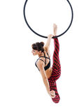 Woman hanging in aerial ring, isolated on white. Background Royalty Free Stock Images