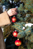 Woman  hanging a christmas decorations on fir closeup. Royalty Free Stock Photography
