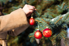 Woman hanging a christmas decorations on fir closeup. Royalty Free Stock Photo