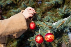 Woman hanging a christmas decorations on fir closeup. Woman dressed in a fur coat hanging a christmas decorations on fir closeup. New year greeting card concept Stock Image