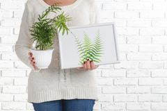 Woman hanging picture with flowers on wall at home stock photo