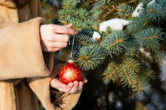 Woman  hanging a red christmas ball on fir closeup. Stock Photography