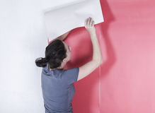 Woman hanging wallpaper Stock Image