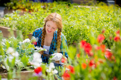 Woman with happy smile in garden Stock Images