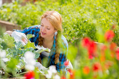 Woman with happy smile in garden Royalty Free Stock Photos