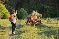 Woman in hat with bouquet of red poppies flowers walking along rural country road, back view. Rustic background, horse with grass. Meadow, forest, golden hour stock photos