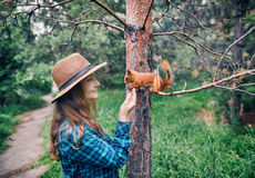 Woman in Hat feeding squirrel in forest. Young hipster woman in hat with long hair feeding funny squirrel in pine forest Royalty Free Stock Image