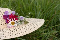 A woman hat  on a green grass Royalty Free Stock Images
