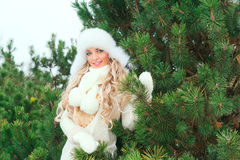 Woman in a hat, mittens, scarves, sweaters, fur in winter fir forest Stock Images