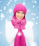 Woman in hat, muffler and mittens Royalty Free Stock Image
