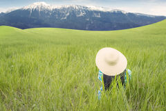 Woman with hat relaxing on the meadow Royalty Free Stock Images