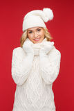 Woman in hat, scarf and mittens Stock Images