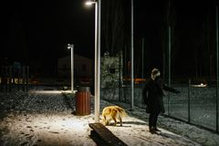 Woman walks at night with the dog on a leash lit by the light of Stock Images