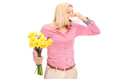 Woman having an allergic reaction to flowers. Young blond woman having an allergic reaction to flowers and blowing her nose isolated on white background royalty free stock images