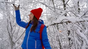Woman is having fun - she is shaking the branches of a tree and snow is falling on her. Clear sunny frosty weather. Slow. Cheerful girl is having fun - she is stock video