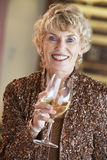 Woman Having A Glass Of Wine At A Bar Royalty Free Stock Images