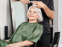 Woman Having Hair Cut At Salon Stock Images