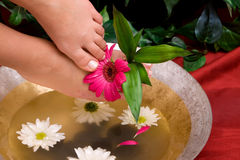 Woman having her pedicured feet bathing Royalty Free Stock Photography