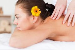 Woman having a massage Stock Photography