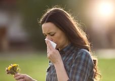 Woman having symptoms of spring pollen allergy. Young pretty woman sneezing and blowing nose while holding bouquet of spring flowers from meadow. Pollen allergy Royalty Free Stock Photography