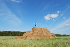Woman on hay bale in summer field Stock Image