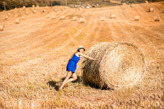 Woman on the hayfield. Young woman in blue dress pushing hay roll on the hayfield in Tuscany in Italy Stock Images